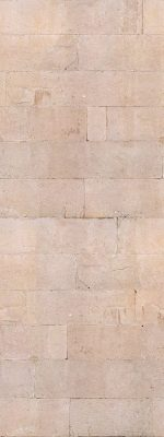379-dalmatian-wall_opt_opt
